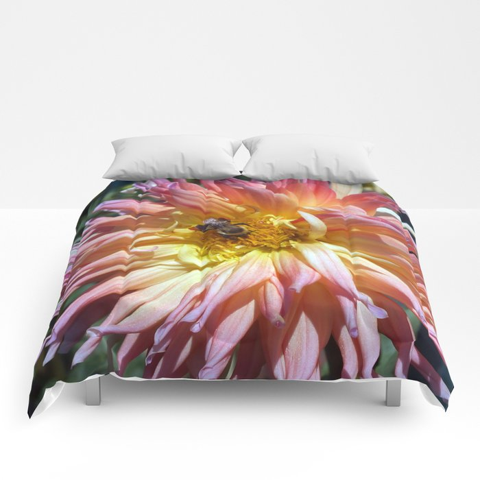 The Apricot Dahlia And The Bee Comforters