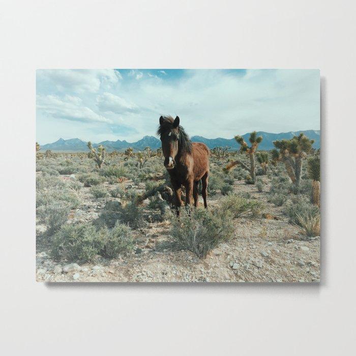 Nevada Desert Horse Metal Print