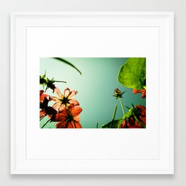 Withering up and away! Framed Art Print