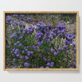 Desert Wildflowers - 7187 Serving Tray