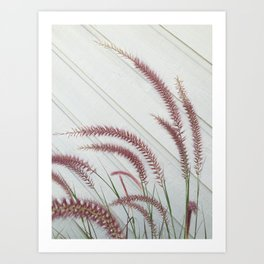 Purple Fountain Grass Art Print