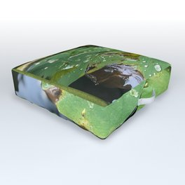 Water Lilies on a Pond Outdoor Floor Cushion