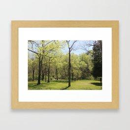 The Brightness  Framed Art Print