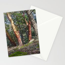 MADRONA WOODS Stationery Cards