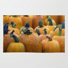 Pumpkin Field Rug