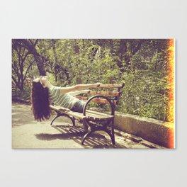 parallel II Canvas Print
