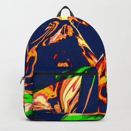 Cache Backpack