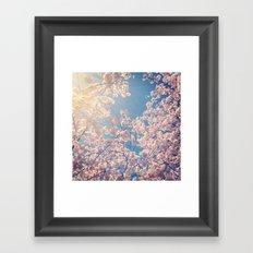 Blossom Series 1 Framed Art Print