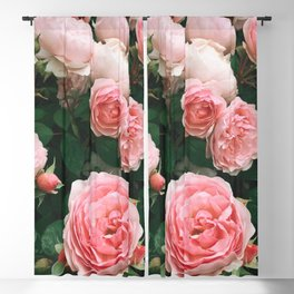 Dark Rose Blackout Curtain