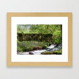 Bluebells By The Stream Framed Art Print