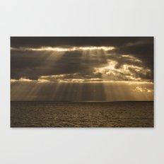 Golden rain Canvas Print
