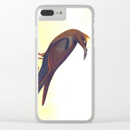 Noddy Tern Bird Clear iPhone Case