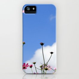 Pink Cosmos and Blue Sky Photography iPhone Case