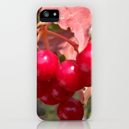 The Red kalinka. iPhone Case