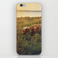 Beast of the southern wild iPhone & iPod Skin