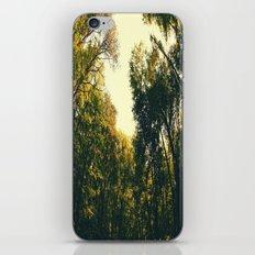 Sweet Surroundings  iPhone & iPod Skin