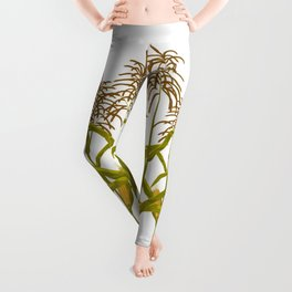 Corn maize pattern Leggings