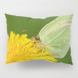 Brimstone Butterfly Pillow Sham