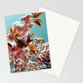 Pretty in Pink Flowers Stationery Cards