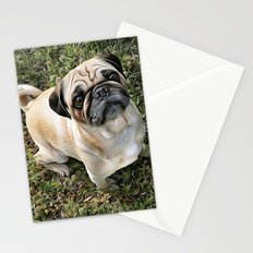 Two Cute Pugs . . .  We are Gorgeous and we Know It! Stationery Cards