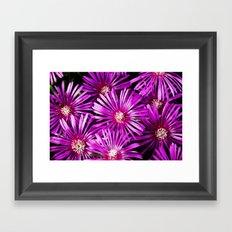 Vibrant Purple Flowers Framed Art Print