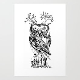 The Wonder Kingdom: The Owl of Life and Death Art Print