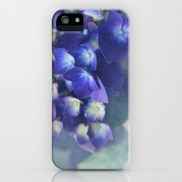 In the Morning Mists iPhone Case