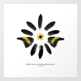 feather mandala... goldfinch wings, crow feathers, black eyed susan Art Print
