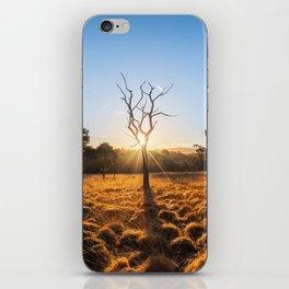 Coronation Plantation - Ireland (RR220) iPhone Skin