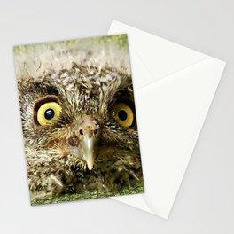 Western Screech Owl Baby Stationery Cards