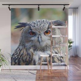 Eurasian Eagle-Owl, Uhu Wall Mural