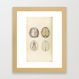Vintage Illustration of Human Brain Framed Art Print