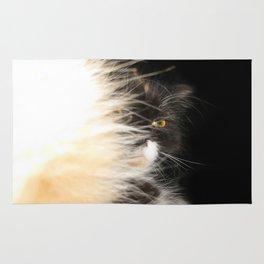 Fluffy Calico Cat Rug