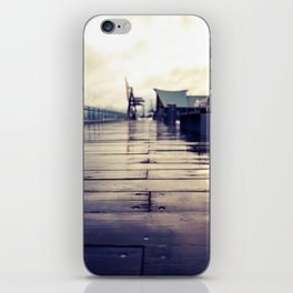 Olympia waterfront  iPhone Skin