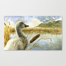 The Ugly Duckling Sees Swans in the Sky Canvas Print