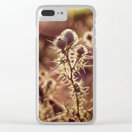prickly glow Clear iPhone Case