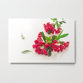 Red fruit Metal Print