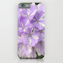 White and Lilac Verbena iPhone Case