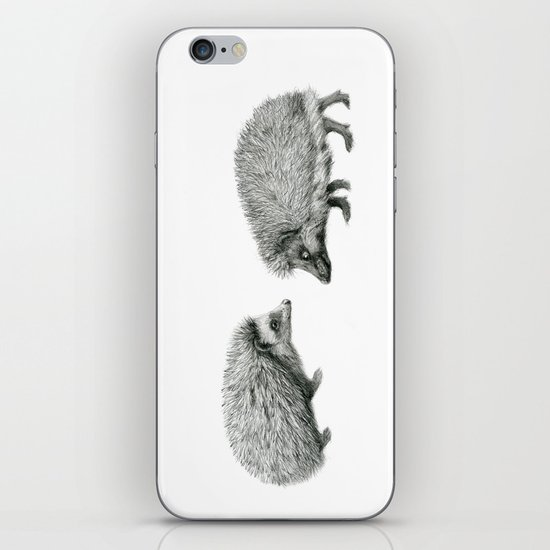 Funny Hedgehog SK050 iPhone & iPod Skin