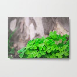 Green Clover and Grey Tree Metal Print