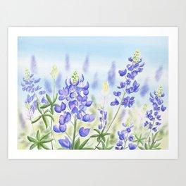Bluebonnet Art Print