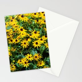 Sun Flowers Stationery Cards