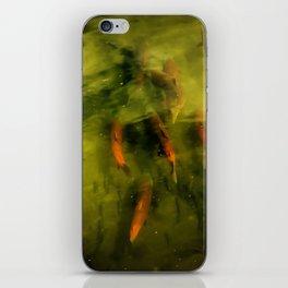 Sockeye Salmon at Potter Marsh iPhone Skin