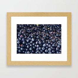 Blueberries & berries blue Framed Art Print