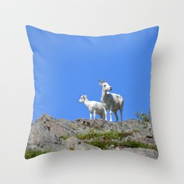 Ewe and Lamb Dall Sheep Throw Pillow