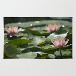 Longwood Gardens - Spring Series 272 Rug