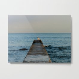 Seagull on the pier Metal Print