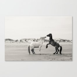 Wild Horses 4 - Black and White Canvas Print