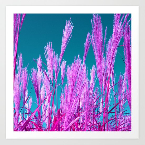 purple grasses I Art Print