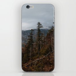Fall in New Hampshire iPhone Skin